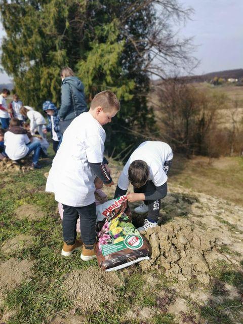 FOTO: Nova stabalca krase Bukovčak, zasadili ih školarci iz Dubranca