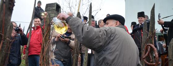 Vincekovim počela vinogradarska godina